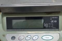 B30-ISHIDA-3KG-SKAAL